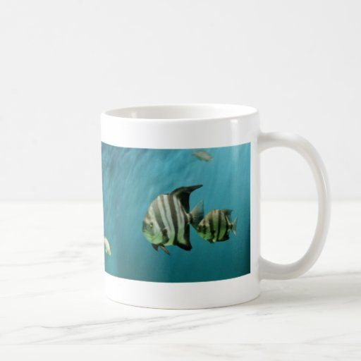 liquid lines classic white coffee mug