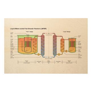 Liquid Metal Fast Breeder Reactor Schematic Wood Wall Art