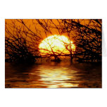 Liquid Sunset CARD