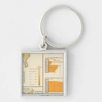 Liquors, tobacco, whiskey Silver-Colored square keychain