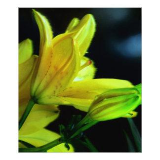 Lirio amarillo con efecto de viento fotografía