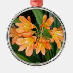 Lirio anaranjado con las floraciones múltiples ornamento para reyes magos