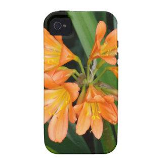Lirio anaranjado con las floraciones múltiples vibe iPhone 4 funda
