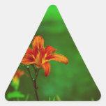 Lirio anaranjado de la flor calcomania de triangulo