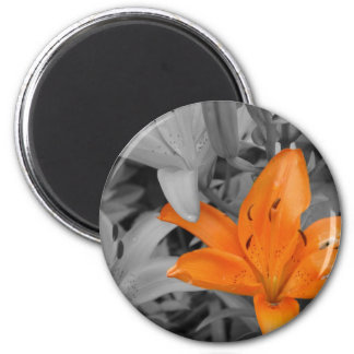 Lirio anaranjado Mano-Coloreado Imán De Nevera