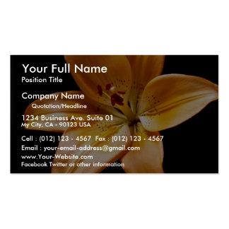Lirio anaranjado tarjetas de visita