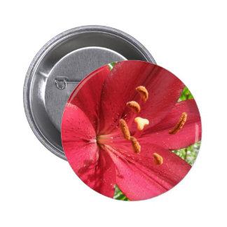 Lirio asiático rojo pin redondo 5 cm