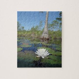 Lirio de agua 2 puzzles con fotos