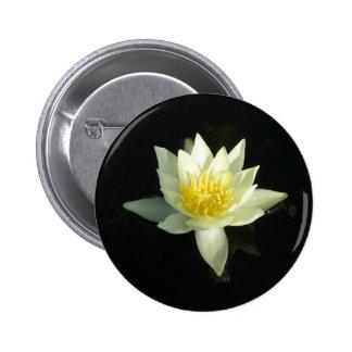 Lirio de agua blanca/Lotus Pin Redondo 5 Cm