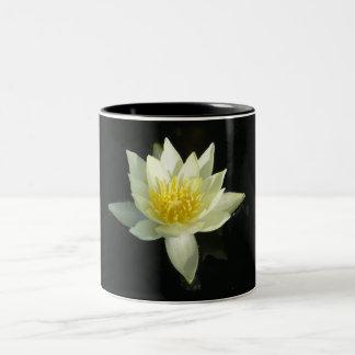 Lirio de agua blanca/Lotus Taza De Dos Tonos