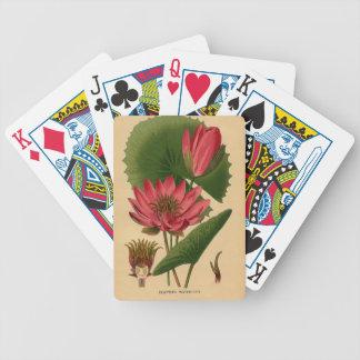 Lirio de agua botánico del rosa de la impresión de barajas de cartas