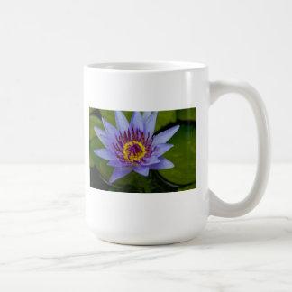 Lirio de agua de Hawiian Tazas De Café
