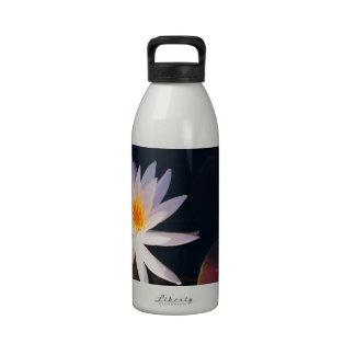 Lirio de agua de la mañana botellas de beber