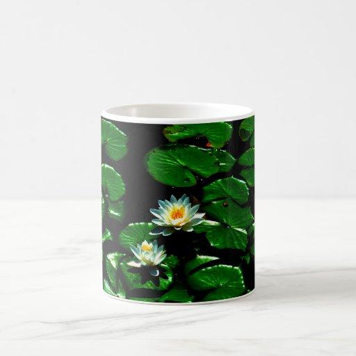 Lirio de agua Lotus Taza Clásica