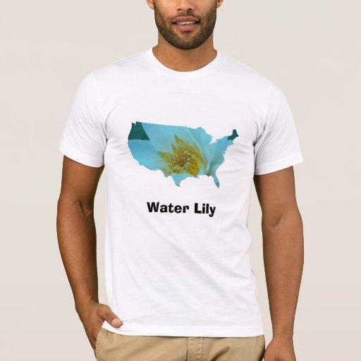 Lirio de agua playera