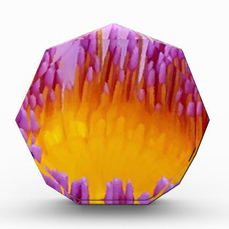 Lirio de agua púrpura afortunado de la flor de Lot