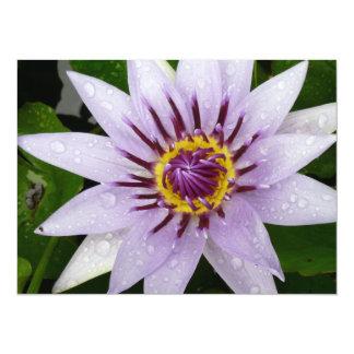Lirio de agua púrpura hermoso invitación 13,9 x 19,0 cm