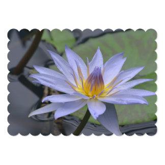 Lirio de agua púrpura invitación 12,7 x 17,8 cm