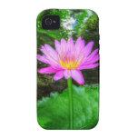 Lirio de agua púrpura iPhone 4/4S carcasa