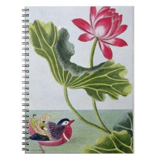 Lirio de agua roja chino, volumen I, placa 82, de  Spiral Notebooks