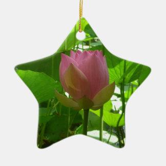 Lirio de agua rosado - ahora abriéndose adorno navideño de cerámica en forma de estrella
