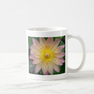 Lirio de agua rosado taza básica blanca