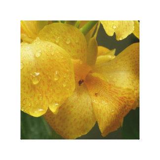Lirio de Canna amarillo llamativo Impresión En Lienzo