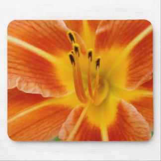 Lirio de día anaranjado alfombrilla de raton