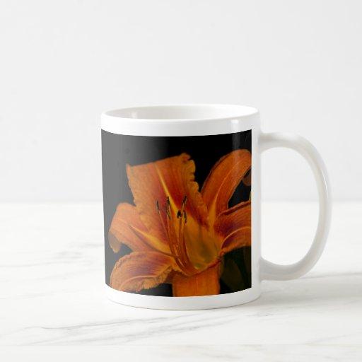 Lirio de día anaranjado tazas de café