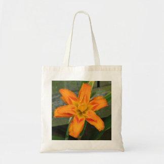 Lirio de día doble anaranjado bolsa