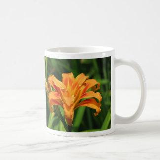 Lirio de día doble anaranjado tazas