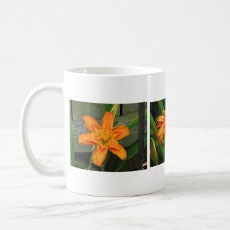 Lirio de día doble anaranjado tazas de café