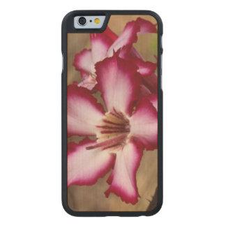 Lirio de impala (Adenium Multiflorum), Kruger Funda De iPhone 6 Carved® De Arce