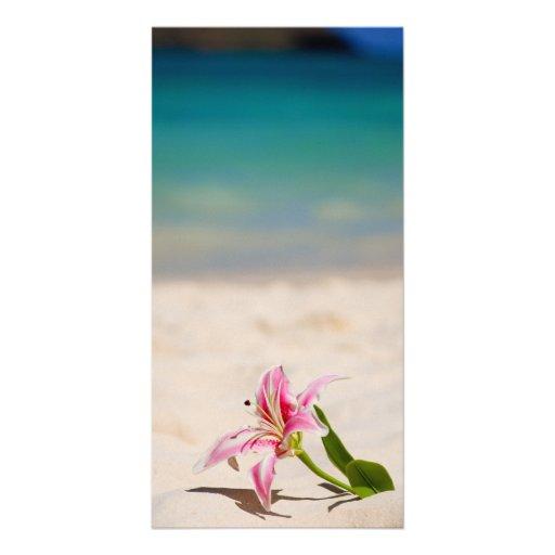 Lirio de la playa tarjeta personal con foto