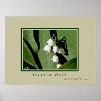 Lirio de los valles posters