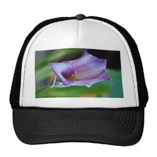 Lirio de los valles púrpura y significado gorros bordados