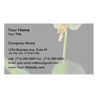 Lirio de trucha blanco tarjetas de visita