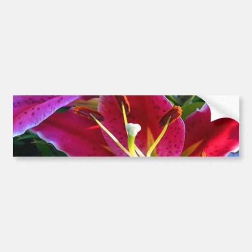 Lirio del jardín etiqueta de parachoque