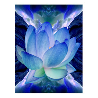 Lirio del loto azul postal