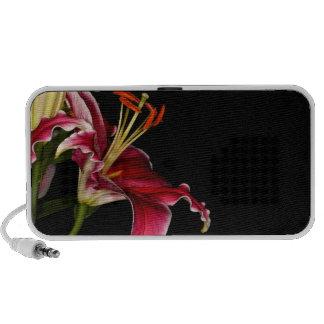 Lirio del Stargazer iPod Altavoces