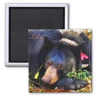 Lirio el oso negro con el imán de las cintas
