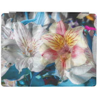 Lirio hermoso en la floración cubierta de iPad