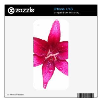 Lirio púrpura del starburst iPhone 4S calcomanías