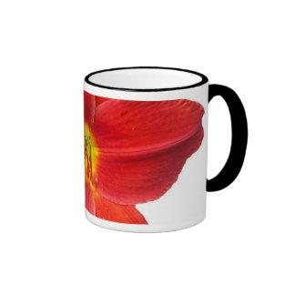 Lirio rojo grande taza a dos colores