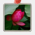 Lirio rosado adorno