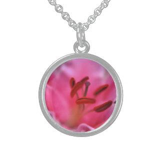 Lirio rosado collares de plata esterlina