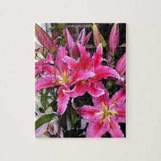 Lirio rosado del Stargazer Rompecabezas Con Fotos