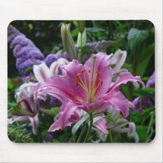Lirio rosado en el jardín de flores mouse pads
