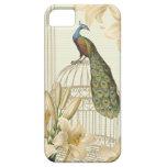 Lirio sofisticado del birdCage del pavo real del v iPhone 5 Cobertura