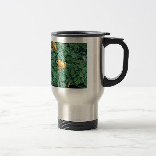 Lirio tigrado anaranjado - fotografía tazas de café